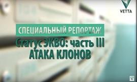 Специальный репортаж «Коммунальные клоны»