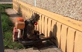 Дезинфекция подвала и мусоропровода в доме по адресу ул. Сигаева, 2