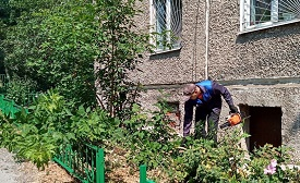 Санитарная обработка придомовой территории по адресу ул. Ким, 11
